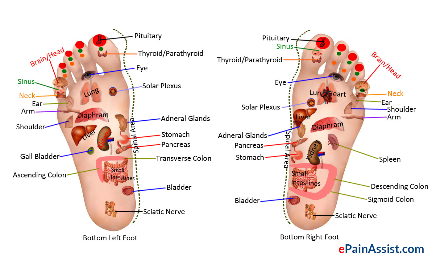 Blog Page 2 Of 4 Body Balance Massage And Float Foot Diagram Answers From A Therapist Part 3 What Is Reflexology